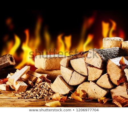 Fireplace and firewood Stock photo © Alegria111