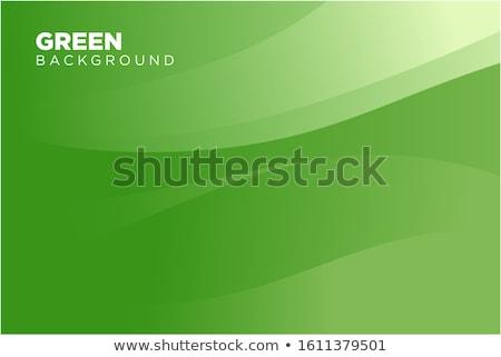Zdjęcia stock: Zielone · cztery · fali · projektu · tle · przestrzeni