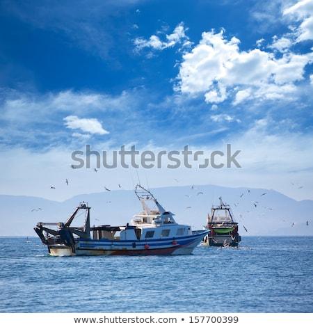 Trwler boats with seagulls in Ibiza Formentera Stock photo © lunamarina