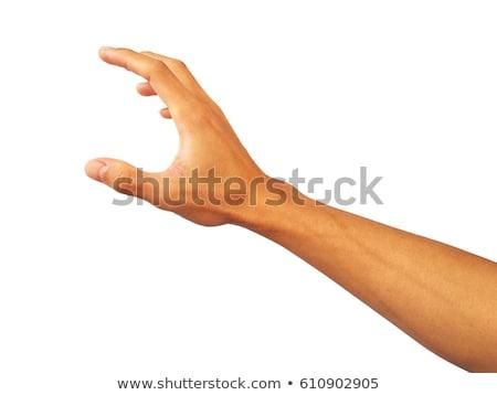 mannelijke · hand · iets · witte · goed - stockfoto © bloodua