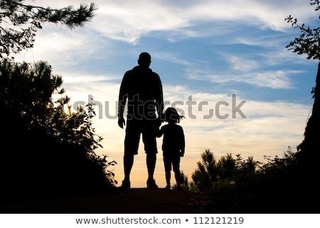 Sunset And Shrub Silhouette Stock photo © derocz