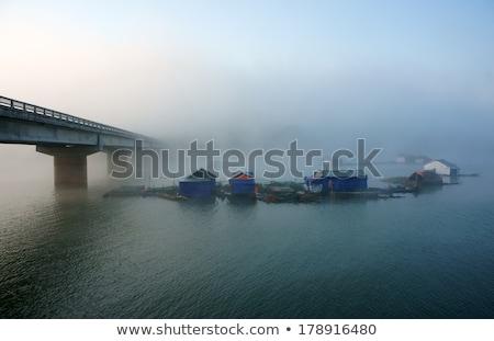 Bridge Fishing Hamlet On Lake In Fog Foto stock © xuanhuongho