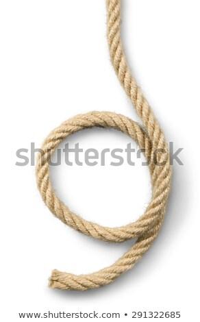 cuerda · aislado · blanco - foto stock © boroda