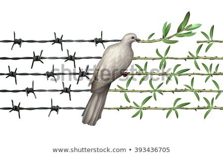 Háború béke konfliktus irányítás feliratok mutat Stock fotó © stevanovicigor