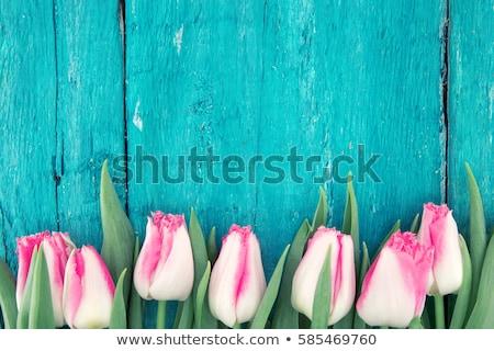 Stock foto: Foto · Bouquet · Frühling · Tulpen · Jahrgang · Blumen