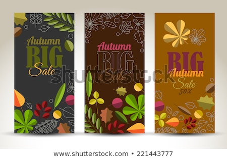 fresh minimalist fall vertical banners with leafs and sample text stock photo © orson