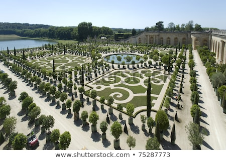 Fountain at the Chateau de Versailles Gardens Stock photo © maxmitzu