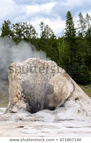 Kalksteen kegel actief geiser reus landschap Stockfoto © wildnerdpix