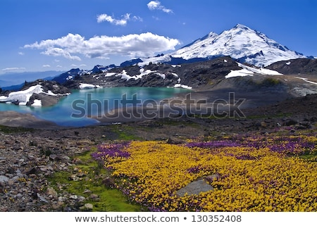 Бейкер · Вашингтон · долины · британский · природы · пейзаж - Сток-фото © hpbfotos