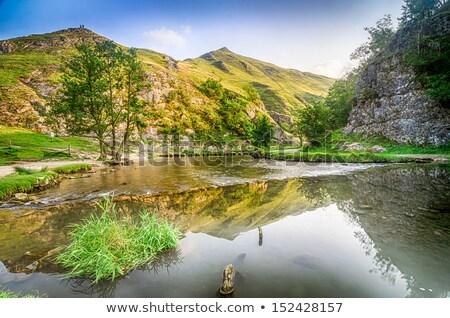 Dove Stone Peak District Stock photo © chris2766