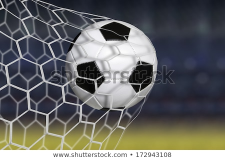 german goals 2016 concept stock photo © andreasberheide