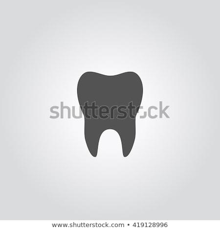 Wektora struktury zębów ilustracja ikona kolorowy Zdjęcia stock © TRIKONA
