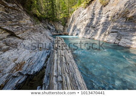 spring brook stock photo © kotenko