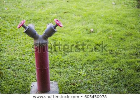 Piros tűz zöld gyep fotó épület Stock fotó © Hermione
