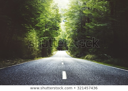 Road out in the country Stock photo © artistrobd