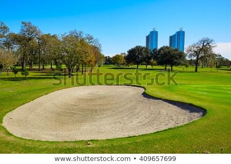 ヒューストン ゴルフコース 公園 ゴルフ 緑 青 ストックフォト © lunamarina