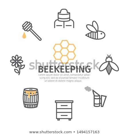 Stockfoto: Bee · bijenkorf · roker · lijn · icon · hoeken