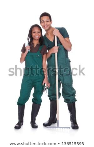 Gardener holding a rake Stock photo © bluering