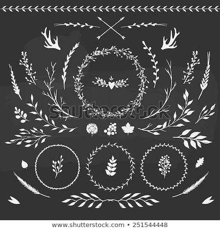 floral heart designs vector set stock photo © beaubelle