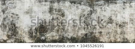 Paint and rust texture Stock photo © Zela