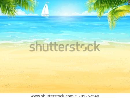 branco · veleiro · mar · verão · temporada · árvore - foto stock © ankarb