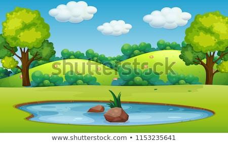 Manzara gölet tepeler güneşli yaz sahne Stok fotoğraf © karandaev