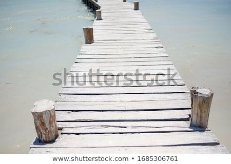 empty wooden pier walkway on sea shore stock photo © stevanovicigor