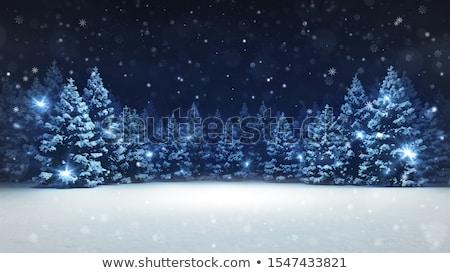 зима ель высокий небе день снега Сток-фото © psychoshadow