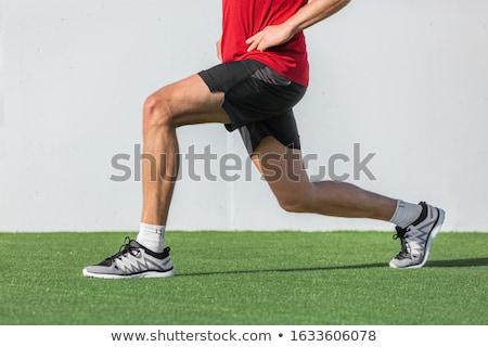 masculino · muscular · anatomia · vista · lateral · ilustração - foto stock © is2