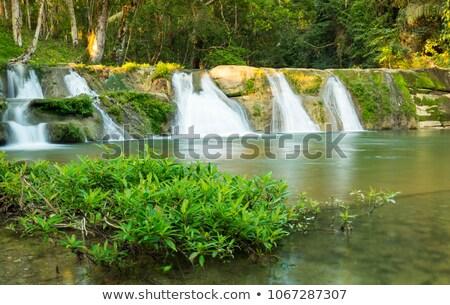 Vízesés Belize természetes víz zöld medence Stock fotó © THP
