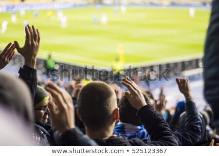 football premier league soccer championship background Stock photo © SArts