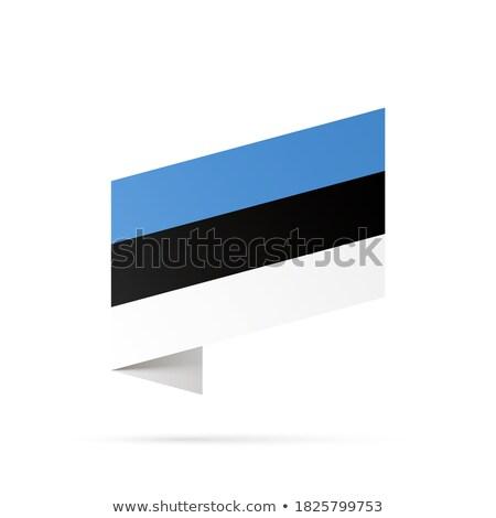 Estonia banderą odizolowany nowoczesne cień projektu Zdjęcia stock © kyryloff