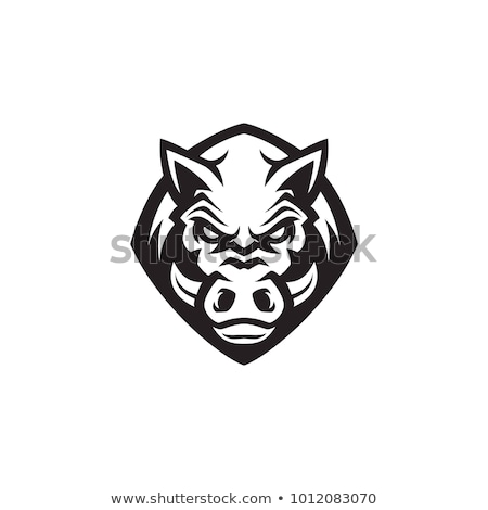 Verraco americano fútbol mascota icono Foto stock © patrimonio