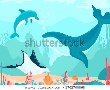Underwater World Vector. Bottom, Fish, Seaweed, Bubbles. Isolated Flat Cartoon Illustration Stock photo © pikepicture