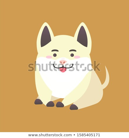 Chinese New Year Pig Pretends to be Dog Isolated Stock photo © robuart
