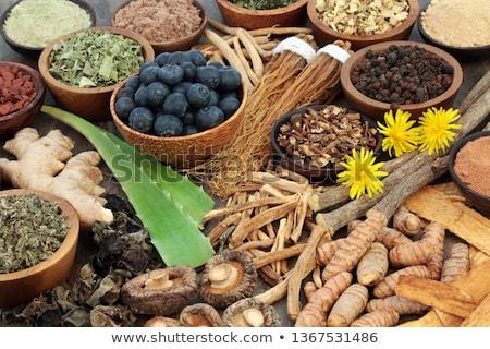 Gyógyászati pitypang fehér tavasz orvosi levél Stock fotó © bdspn