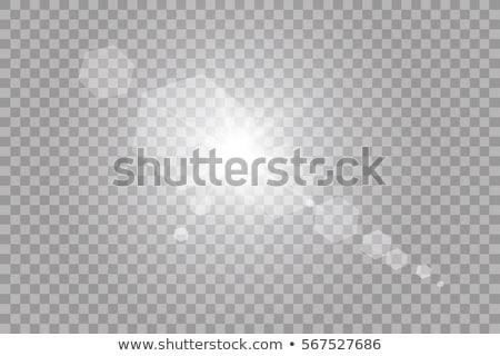 Wektora przezroczysty światło słoneczne specjalny świetle Zdjęcia stock © Iaroslava