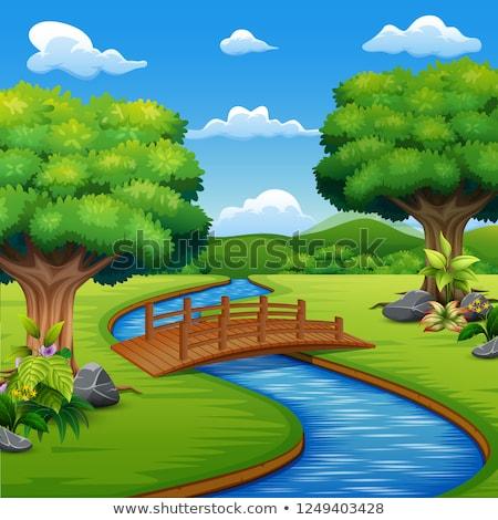 Szene Brücke Stream Illustration Landschaft Hintergrund Stock foto © colematt