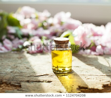 bottles of essential oil with frankincense oregano lavender stock photo © madeleine_steinbach