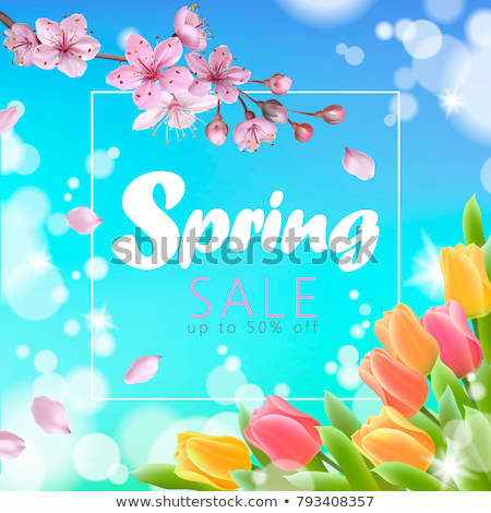 Witte tulp bloemen vector realistisch banner Stockfoto © frimufilms