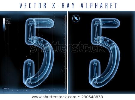 прозрачный Xray числа пять 3D 3d визуализации Сток-фото © djmilic