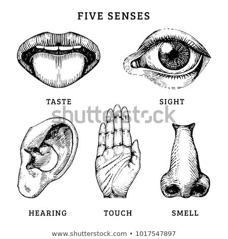 Body senses taste. Tongue icon on black and white background Stock photo © Imaagio