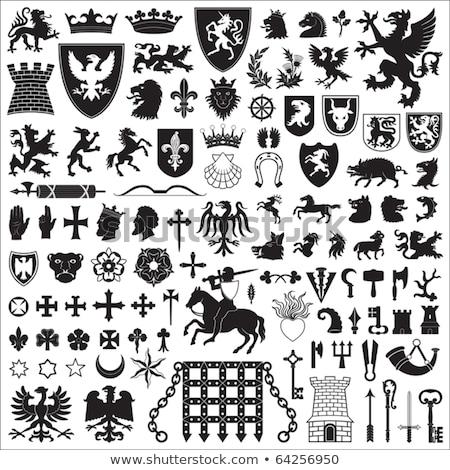 Knight иконки шаблон средневековых царство легендарный Сток-фото © netkov1
