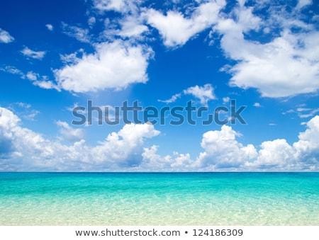 Zeegezicht Blauw water hemel witte wolken Stockfoto © vapi