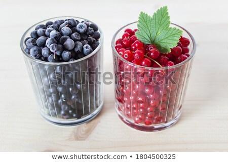 Dois mirtilos diariamente azul fora Foto stock © mybaitshop