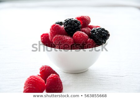 bowls with wild berries stock photo © rob_stark