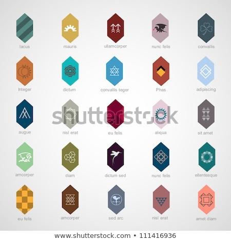 różny · kolorowy · streszczenie · 24 · ikona - zdjęcia stock © cidepix
