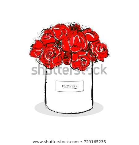vector rose flowers in box isolated on white Stock photo © LoopAll