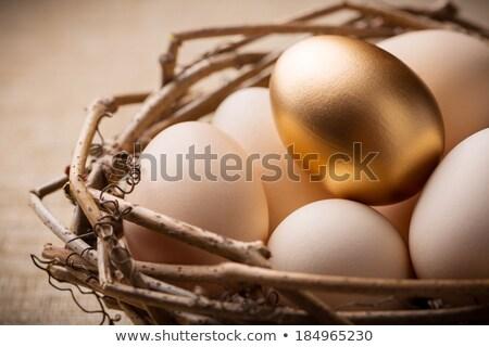 eggs basket   vertical view stock photo © bugstomper