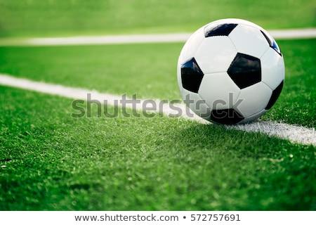 Сток-фото: футбольным · мячом · области · различный · флагами · чемпионат · трава